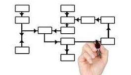 organisations.jpg
